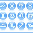 Zodiac icons — Stock Vector