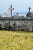 Wheat field, stone wall and cemetery — Stock Photo