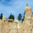 Bryce canyon : peak of The Queen — Stock Photo