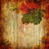 Grunge abstracte achtergrond met rowan — Stockfoto