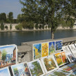 Paris view of the river Seine - Stock Photo