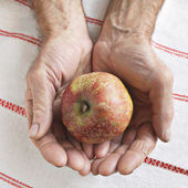 Apple in the hands of old man — Stock Photo
