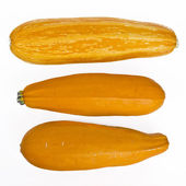 Yellow marrows — Stock Photo