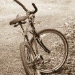 Bicycle in Black and White — 图库照片