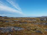 Earth and sea , Greenland. — Stock Photo