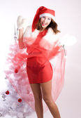 Pretty xmas — Stock Photo