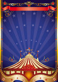 Big top at night — Stock Vector