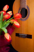 Tulips and guitar — Stock Photo