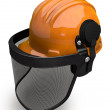 Landscaping Hard Hat with Visor Combo — Stock Photo