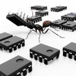 Stock Photo: Ant Organizing Microchips