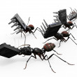 Ants Carrying Microchips — Stock Photo