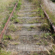 Stock Photo: Abandoned Train Tracks