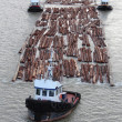 Stock Photo: Three Tugboats Pulling Boom
