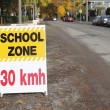 English School Zone Sign — Stock Photo