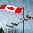 CanadFlag — Stock Photo #7608494