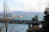 Pojazdy na moście Brama Lwów — Zdjęcie stockowe
