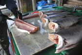 Filleting Coho Salmon — Stock Photo
