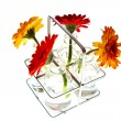 Tray with springflowers — Stock Photo #7553681