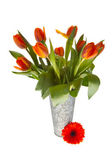 Springflowers in vase — Stock Photo