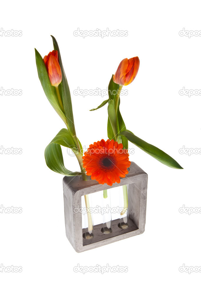 Orange springflowers for dutch queensday and easter — Stock Photo #7553692