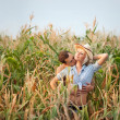 Tenderness in a cornfield — Stock Photo