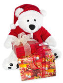Bear with christmas hat — Stock Photo