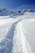 Ski snowboard tracks in pure white powder snow — Stock Photo
