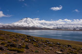 Laguna miscanti sjön med snö utjämnade vulkan, altiplano, atacam — Stockfoto