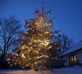 Christmas Tree with home outside — Stok fotoğraf