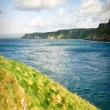 Sunny Causeway coast, Northern Ireland — Stock Photo
