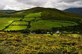Dingle peninsula, Ireland — Stock Photo