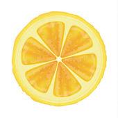 Lemon slice vector — Stock Vector