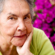 Beautiful senior woman portrait - Stock Photo