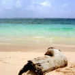 Beautiful beach — Stock Photo #7568838