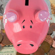 Piggy bank savings - top view — Stock Photo #7633085