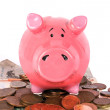 Business savings on piggy bank 2 — Stock Photo