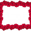 Beautiful rose frame — Stock Photo