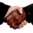 Business deal - multiracial - Stock Photo
