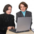 Business female team with laptop — Stock Photo