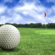 Stock Photo: Golf ball in a course