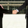 Stock Photo: Business couple shaking hands - full bodies2