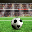 Football - penalty in the stadium - Stock Photo