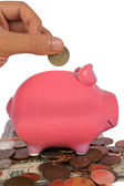 Business savings in a piggy bank — Stok fotoğraf