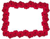 Schöne rose frame — Stockfoto