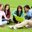 College or university students — Stock Photo