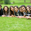 Stock Photo: Group of outdoors