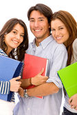 Young students isolated — Stock Photo
