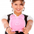 Business savings - Stock Photo