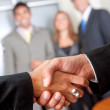 Business handshake — Stock Photo #7703547