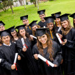 Large group of graduates — Stock Photo